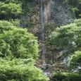 男水の白滝