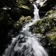 権現の滝・下流