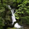 白猪滝渓流の滝